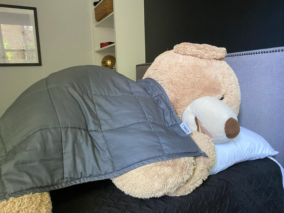 Stuffed giant bear sleeping with a weighted blanket on top of him.